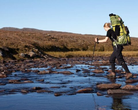 How to Walk with Trekking Pole Guide