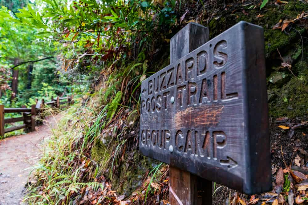 1. Buzzards Roost Trail